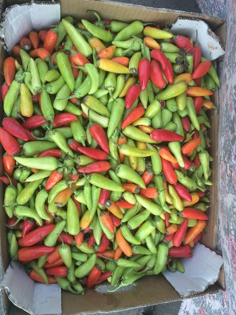 Pepertjes op de groentemarkt van Jenin