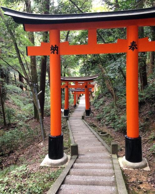 Een verlaten stuk pad onder duizenden torii